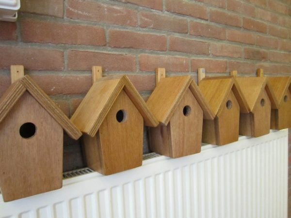 Vogelhuis 5