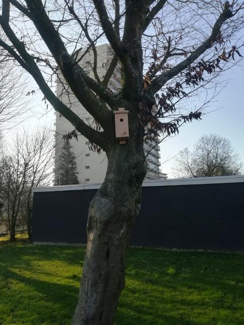 Vogelhuis ridderkerk 2