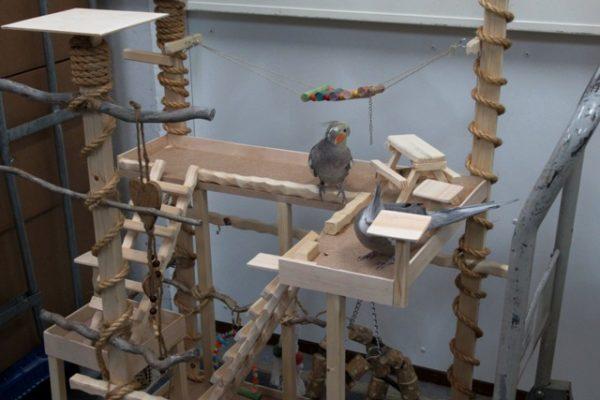 Vogelspeeltuin groot 3